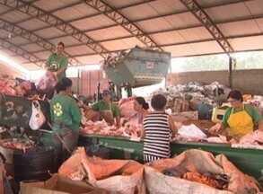 Exemplo! - Penápolis recicla 100% do lixo produzido na cidade