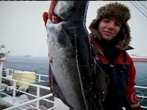 Pesca do bacalhau na Noruega - Viagem até o mar da Noruega mostra como é feita a pesca do bacalhau. Globo Mar visita vilareijo de Andenes em frente ao mar da Noruega.