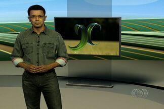 Veja os principais destaques do Jornal do Campo - Nesta semana, o JC mostra que agricultores estão preocupados com as pragas nas lavouras de feijão e algodão.
