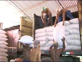Milho com preço diferenciado é disponibilizado pela Conab para agricultores - Nove municípios do sertão baiano começaram a receber milho com preço abaixo do mercado para ração do gado que restou após a seca.