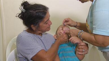 Começa campanha de vacinação contra a poliomielite em Pernambuco - Meta é imunizar 630 mil crianças no estado.