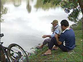 Lago municipal é liberado para pesca esportiva em Araçoiaba da Serra, SP - Araçoiaba da Serra (SP), que já é conhecida por causa do turismo rural, passa a contar com mais um ponto de lazer. O lago da cidade está liberado para a pesca. Nos fins de semana e feriados, moradores e visitantes podem praticar a pesca esportiva.