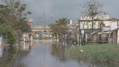 Projeto quer incentivar preservação do Igarapé do Mindu - Projeto foi lançado neste sábado em Manaus