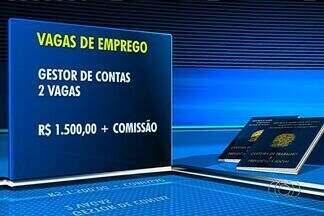 Confira vagas de emprego em Goiânia - Dentre as oportunidades estão duas vagas de gestor de contas com salário de R$ 1,5 mil e comissão.