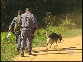 Polícia intensifica buscas por mulher desaparecida em Catanduva, SP - A polícia intensificou nesta terça-feira (6) as buscas para encontrar a professora de Catanduva (SP) desaparecida há 10 dias. Apesar do esforço concentrado, o mistério sobre o paradeiro da mulher de 36 anos continua.