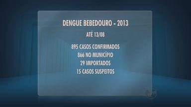 Vigilância epidemiológica divulga balanço de casos de dengue em Bebedouro - 895 casos foram registrados neste ano até o dia 13 de agosto.