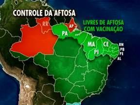 Brasil muda o mapa de controle da aftosa - O Ministério da Agricultura elevou a condição sanitária de parte do Norte e do Nordeste do pai.