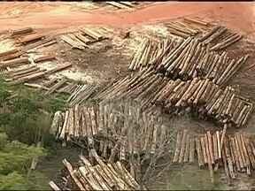 Carretas com madeira extraída ilegalmente da Amazônia são apreendidas - Ao todo, foram 110 carretas flagradas em uma das maiores operações de combate ao desmatamento realizadas no país. Equipe do jornal hoje acompanhou com exclusividade o trabalho dos fiscais do Ibama e dos soldados do Exército.