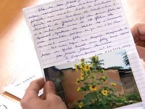 Tipo de girassol produz várias flores e um mesmo pé - Maria Altina Ponciano, de Bambuí (MG), conta que o pé de girassol que ela plantou produziu 20 flores. Segundo o agrônomo, a formação de uma ou muitas flores depende da variedade da planta.