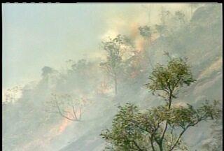 Incêndio florestal no bairro Araras em Petrópolis, RJ, é controlado - Incêndio pode ter sido criminal, porém, suspeito ainda não foi localizado.Equipes controlaram o fogo e retornarão ao local nesta quarta-feira (4).