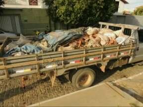Caminhão carregado com produtos de abate clandestino é apreendido em Brumado - De acordo com a Agência de Defesa Agropecuária da Bahia (Adab), o caminhão transportava 50kg de carne, além de ossos e couro.