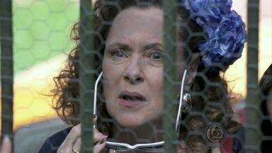 Márcia decide procurar Atílio - Carlito se oferece para ajudar Valdirene e a mãe. Gigi não permite que Márcia entre em sua casa. Atílio se emociona ao reencontrar a ex-chacrete