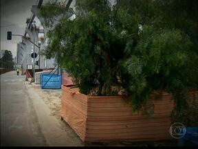 Zona Leste perde quase 2.400 árvores por causa da construção da Linha 15 do Metrô - A cidade tem leis que obrigam os responsáveis por obras, grandes ou pequenas, a compensar o prejuízo causado ao meio ambiente.