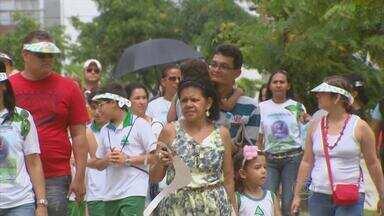 No Recife, Lagoa do Araçá recebe mutirão ambiental no Dia da Árvore - Atividade também marcou o Dia Mundial de Limpeza de Rios e Praias.