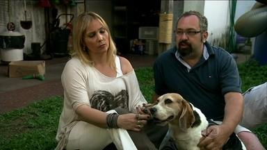 Ativistas mostram como estão os cães retirados do Instituto Royal - Giuliana Stefanini e Luiz Scalea contam por que resolveram agir