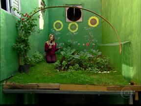 Telhado verde pode ajudar a refrescar no calor - A ideia começa a ganhar espaço em lajes e coberturas de prédios. E não só por causa do calor.