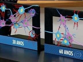 Cérebro de idosos é menor mas mantém funções - O cérebro de pessoas acima de 60 anos tem menos neurônios e menos conexões. No entanto, as informações são preservadas. Para estimular a memória, é preciso fazer atividades diferentes da rotina.