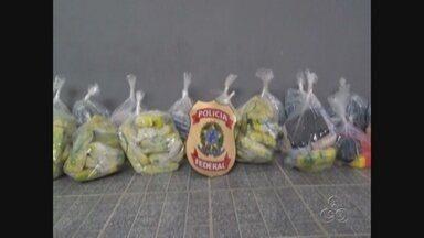 Polícia Federal apreende 241 Kg de cocaína, em Tabatinga-AM - Droga estava em uma embarcação.