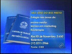 Confira as vagas de emprego desta segunda-feira na região de Rio Preto - Para quem está em busca de emprego o Tem Notícias desta segunda-feira (4) divulgaram vagas em algumas cidades da região noroeste paulista. Confira as oportunidades.