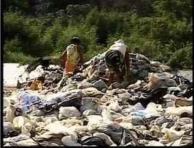 Aterro sanitário de Valadares funciona há quinze dias sem segurança - Catadores aproveitam para fazer a coleta irregular de materiais.
