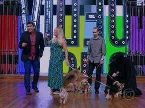 Susana Vieira é a primeira convidada do novo Vídeo Show - Atriz chega ao programa acompanhada de seus cinco cachorros