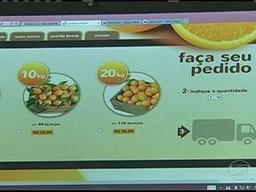 Produtores de laranja buscam alternativas para driblar o preço pago pela indústria de suco - Em Sorocaba (SP), a internet virou ferramenta importante na busca de novos negócios. Os agricultores estão investindo na criação de sites para procurar novos compradores e evitar perdas de produção.