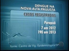 Casos de dengue crescem na Nova Alta Paulista - Osvaldo Cruz foi a cidade que registrou maior número de casos em 2013.