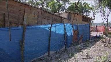 Moradores começam a construir barracos em terreno de São Vicente - Eles dizem que a Prefeitura teria autorizado a construção.