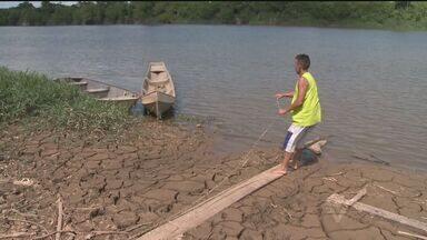 Pescadores de Registro enfrentam problemas por causa da qualidade da água - Diversos peixes apareceram mortos na região do Vale do Ribeira.