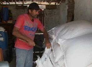 Pequenos produtores podem comprar milho por um preço mais barato - É necessário fazer um cadastro antes de receber os grãos.