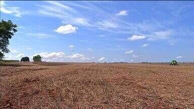Chuvas atrapalham escoamento da produção em Mato Grosso - As chuvas estão dificultando a colheita no oeste do estado e o escoamento está complicado no médio-norte.