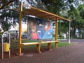 Arte em pontos de ônibus é arma para evitar pichações - Obras de artistas de Rolândia estão aos poucos tomando conta dos 120 pontos da cidade.