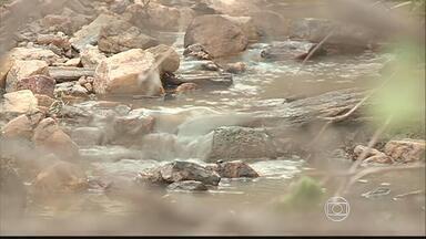 Chuva faz estragos em Santa Cruz do Capibaribe - Água alagou ruas, derrubou muros e árvores e invadiu as casas, que ficaram cheia de lama.