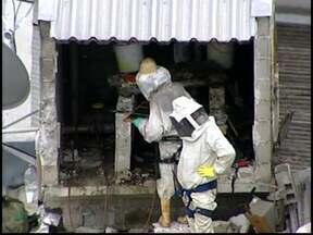 Bombeiros e apicultores fazem retirada de colmeia em Divinópolis - Ação foi programada e apresentava risco de ataque.Cerca de 150 mil abelhas estavam dentro da colmeia, segundo bombeiros.