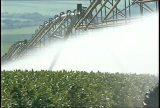 Agricultores de Capão do Cipó, RS, investem na irrigação por meio de pivôs - A alternativa foi pensada devido aos períodos de estiagem que são cada vez mais frequentes.