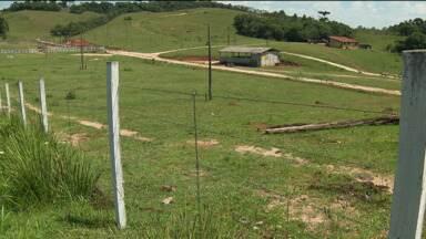 Idosa briga para reaver área da família com Prefeitura - Na justiça ela já teve que brigar com um CTG e agora vai enfrentar a Prefeitura de Campo Magro.