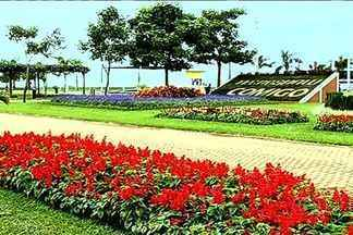 Confira as novidades da Tecnoshow em Rio Verde - O evento é uma das maiores feiras do agronegócio no país e deve encantar os visitantes com seus jardins.