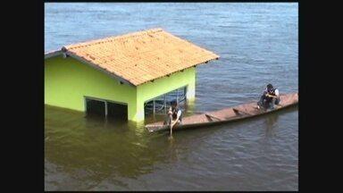 Cheia causa migração de moradores no interior do AM - Em Novo Aripuanã, no sul do Amazonas, Rio Madeira continua subindo; ribeirinhos se deslocam para a sede do município.