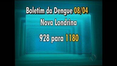 Casos de dengue aumentam na região noroeste do Estado - A cidade com mais registros é Nova Londrina. Veja quais os números do Paraná e as cidades com situações graves.