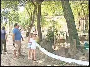 Após dois anos fechado, zoológico de Araçatuba recebe visitantes no feriado prolongado - Famílias da região aproveitaram os feriados para visitar o zoológico de Araçatuba (SP). Esse foi o primeiro fim de semana prolongado depois da reabertura do local. O espaço voltou a funcionar depois de mais de dois anos de reforma.