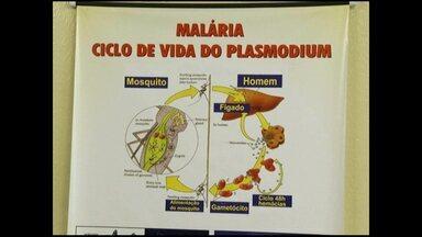 Municípios da região participam de treinamento sobre a dengue e a malária - Em 2013, quatro pessoas morreram vítima de malária na região.