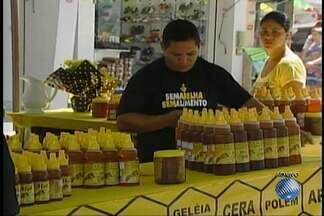 Dia do apicultor é comemorado em feira realizada em Vitória da Conquista - Data é comemorada nesta quinta-feira (22). Pelo menos 50 apilcutores participam do evento.