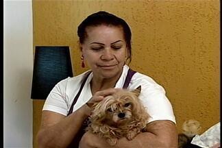 """Quadro """"GRTV Animal"""" aborda os problemas bucais em cães - Cães também podem ter problemas bucais, por isso, é importante escovar os dentes dos animais."""