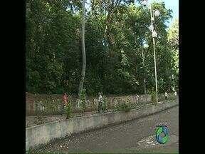 Prefeitura de Londrina é condenada a pagar 10 mil reais por danos causados ao Bosque - A decisão foi do Tribunal de Justiça do Paraná. A ação, proposta pela ONG Mae, apresentou vários problemas na tentativa de abertura da rua Piauí, no meio do Bosque, em novembro de 2011.