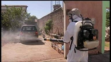 GDF promete intensificar a campanha de combate à dengue - Em cidades como Planaltina, o número de casos quase dobrou em relação a janeiro de 2013. O gerente de Vigilância Ambiental, Júlio César Trindade, fala sobre o assunto.
