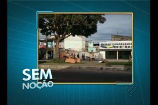 'Sem Noção' flagra despejo de entulho em canteiro de avenida em Belém - Telespectador registrou imagem de irregularidade na avenida João Paulo II, entre Chaco e Curuzu.