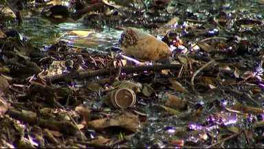Lixo acumulado no lago do Amor em Campo Grande desagrada visitantes - O local é muito visitado por pessoas que querem conhecer as belezas da cidade