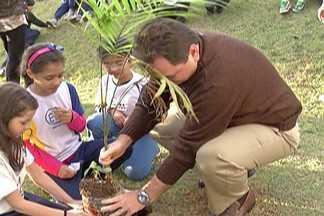 Estudantes de Mogi participam de plantio de árvores na TV Diário - Com funcionários da emissora e a coordenação da Festa do Divino, os estudantes plantaram mudas de palmeira juçara.