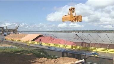 Porto Organizado em RO começa a receber fertilizantes importados - Com equipamento, insumos chegam a Rondônia pelo Rio Madeira. Porto deve receber 400 mil toneladas de fertilizantes até o final de 2015.