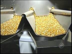 Copa do Mundo movimenta setor de alimentos no noroeste paulista - A Copa do Mundo vem movimentando a economia da região há meses. Um dos setores aquecidos é o de alimentos. Algumas fábricas tiveram de aumentar a produção em até 50% para dar conta dos pedidos.